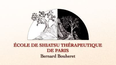 Ecole de Shiatsu Therapeutique de Paris